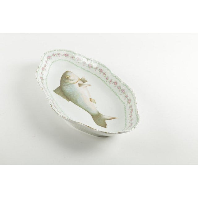 Late 19th Century Austrian Ls (Lewis Straus) & S Carlsbad Porcelain Fish Platter For Sale - Image 5 of 9