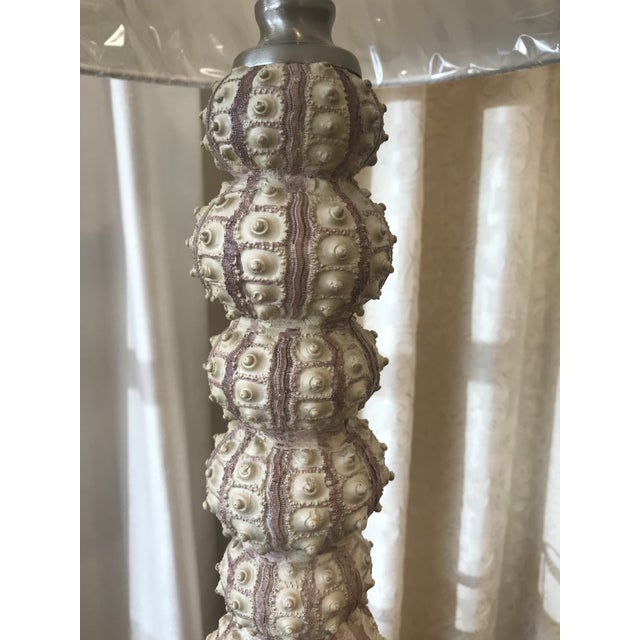 2010s Sea Urchin Darwin Table Lamp by Currey and Company For Sale - Image 5 of 9