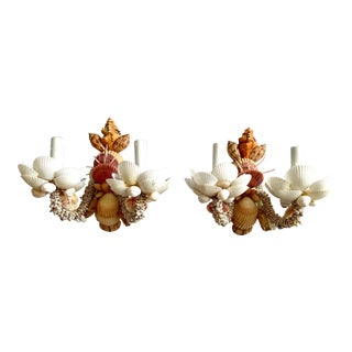 Neutral Two-Light Shell Sconces - a Pair For Sale