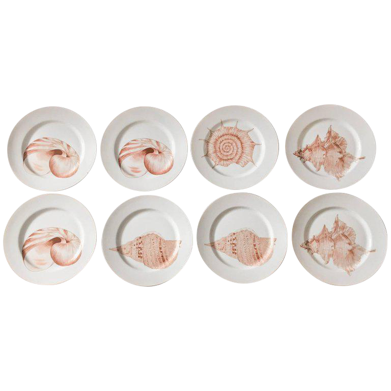 Fitz u0026 Floyd Coquille Nautical Dinner Plates - Set of 8  sc 1 st  Chairish & Fitz u0026 Floyd Coquille Nautical Dinner Plates - Set of 8