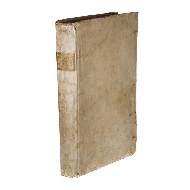 Paper 17th Century Illustrated Vellum Book, Ulisse Aldrovandi's De Quadrupedibus Solidipedibus For Sale - Image 7 of 7