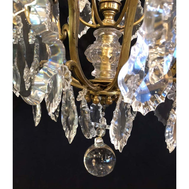 Early 20th Century French Bronze and Crystal Gilt Chandelier, Louis XVI Style For Sale - Image 5 of 13