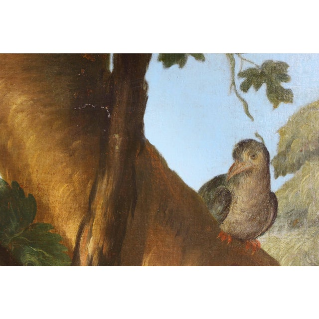 Large Flemish Oil on Canvas of Peacocks and Fruit in Landscape For Sale - Image 4 of 11