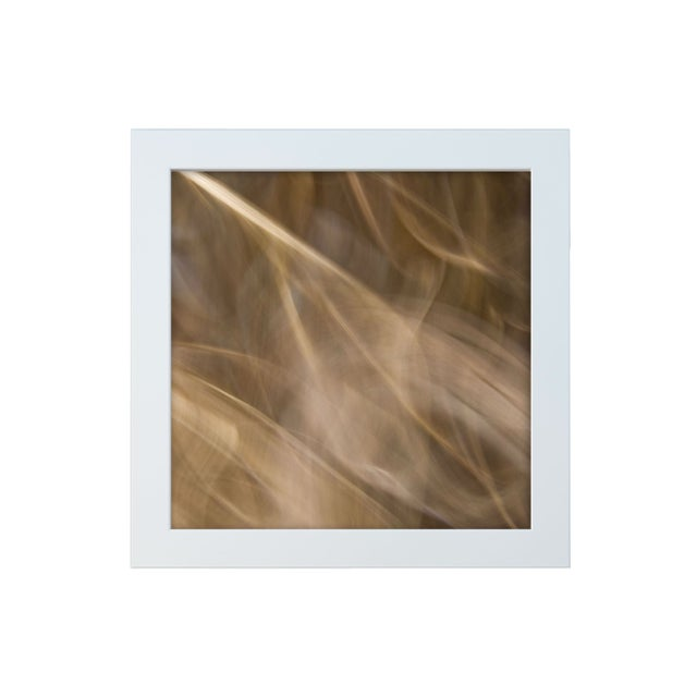 "Gillian Lindsay ""Sheer Joy"" Framed Photo Print - Image 1 of 3"