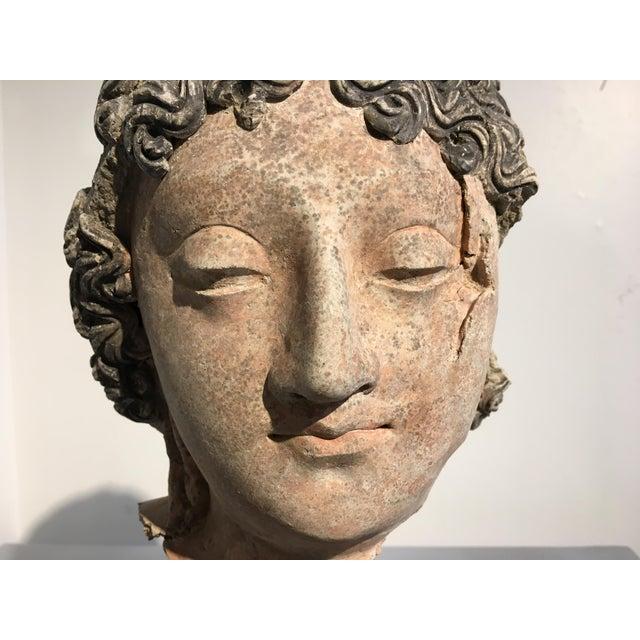 Gandharan Terracotta Head of a Bodhisattva, 3rd - 5th century - Image 9 of 10