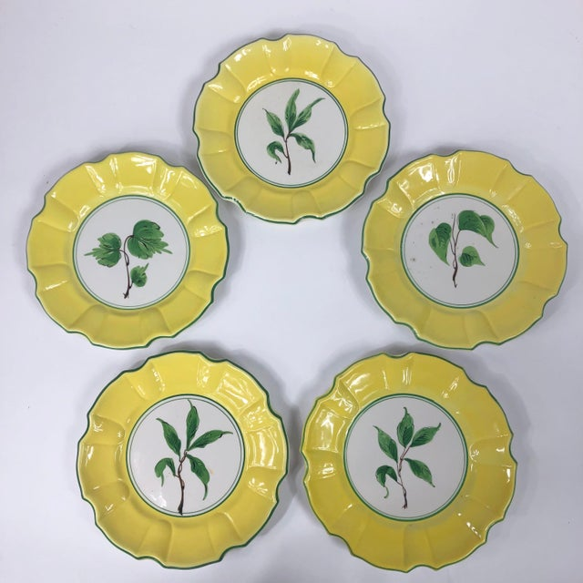 Italian Yellow and Green Hand Painted Leaf Salad/Dessert Plate - Set of 5 For Sale - Image 11 of 11
