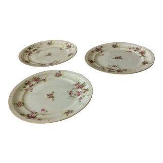 Floral Leaves Salad Plates - Set of 3 For Sale