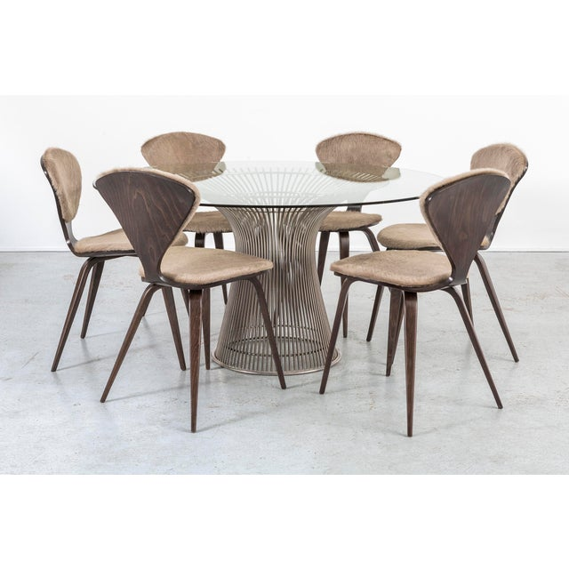 Set of 6 Norman Cherner for Plycraft Dining Chairs For Sale - Image 10 of 11