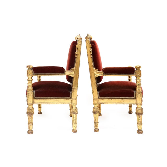 Pair of Majestic giltwood chairs in burgundy red velvet, 19th century, Italy.