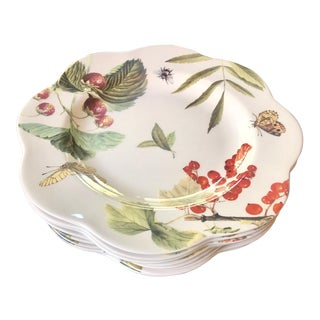 "Spode New ""Fruit Haven"" Daisy Scalloped Edge Plates - Set of 8 For Sale"