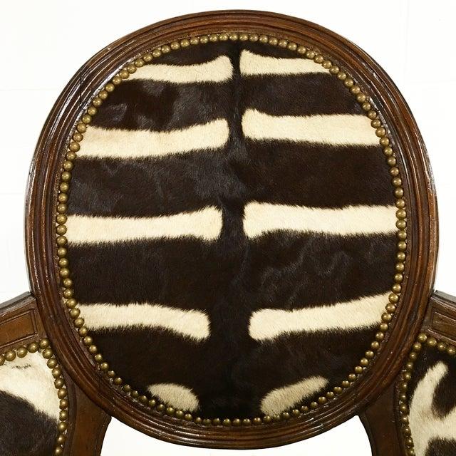 Louis XVI Style Walnut Bergere in Zebra Hide - Image 4 of 7