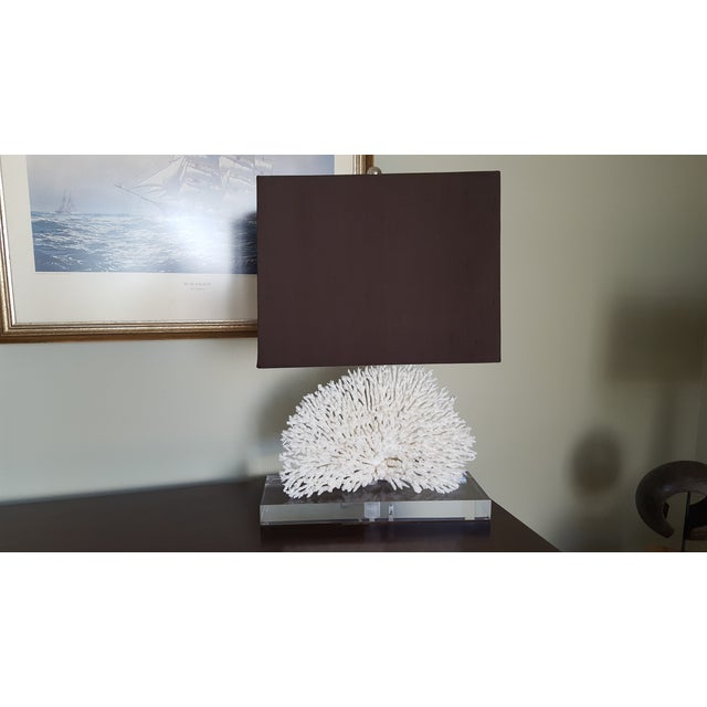 Coral Lamp on Lucite Base - Image 2 of 3