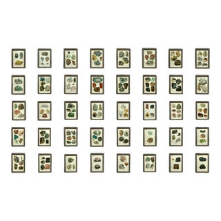 Early 20th Century Antique Mineral Print Collection - Set of 40 For Sale