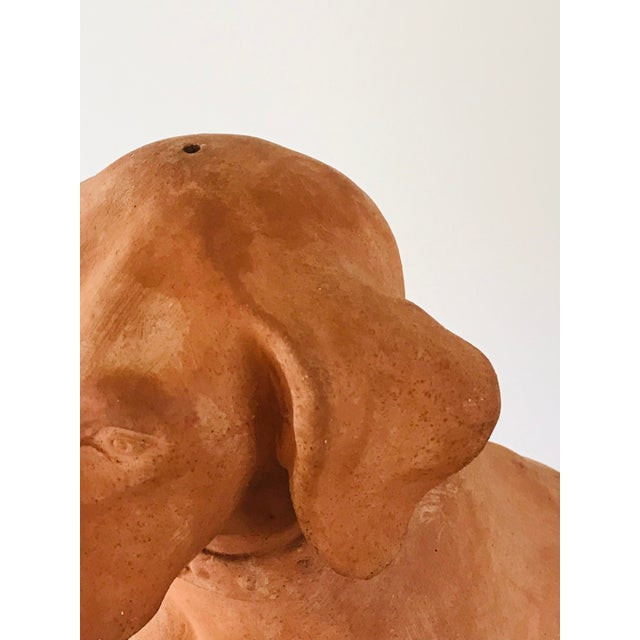 Italian Terracotta Statue of a Hound For Sale - Image 12 of 13