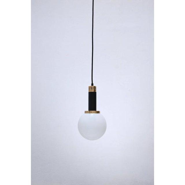 Lumfardo Luminaires Customizable Micelu Pendants For Sale - Image 4 of 10
