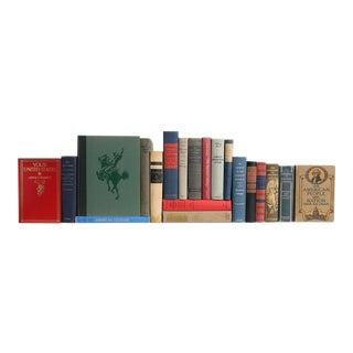 American Culture Collection - Twenty Decorative Books For Sale