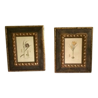 Pair of 19th Century Bessa Stipple Engravings Framed Botanical For Sale