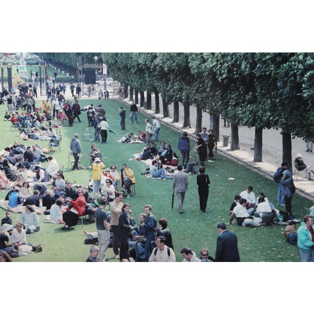 "Massimo Vitali, ""Picnic Allee"", Photograph For Sale - Image 4 of 6"