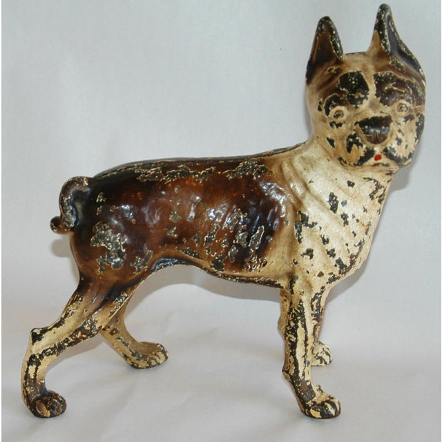 Vintage Cast Iron Boston Terrier Doorstep Figurine For Sale - Image 10 of 11 - Vintage Cast Iron Boston Terrier Doorstep Figurine Chairish