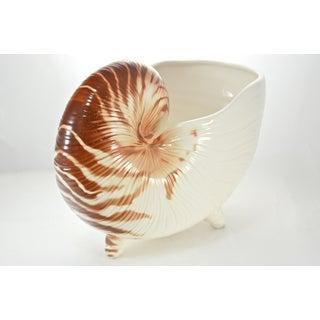 Nautilus Shell Bowl Preview