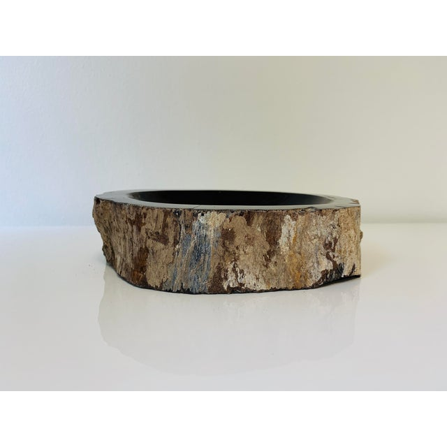 Abstract Petrified Wood Bowl/Catchall For Sale - Image 3 of 8
