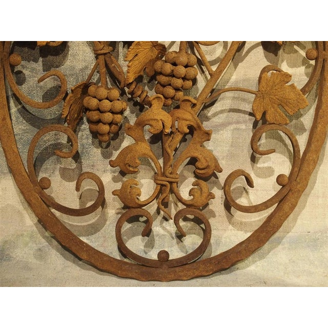 Decorative Oval Iron Wall Hanging With Scrolling Grape Vines For Sale In Dallas - Image 6 of 11