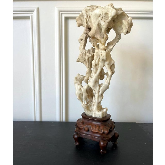 Chinese White Scholar Stone from Taihu Lake on Display Stand For Sale - Image 12 of 13