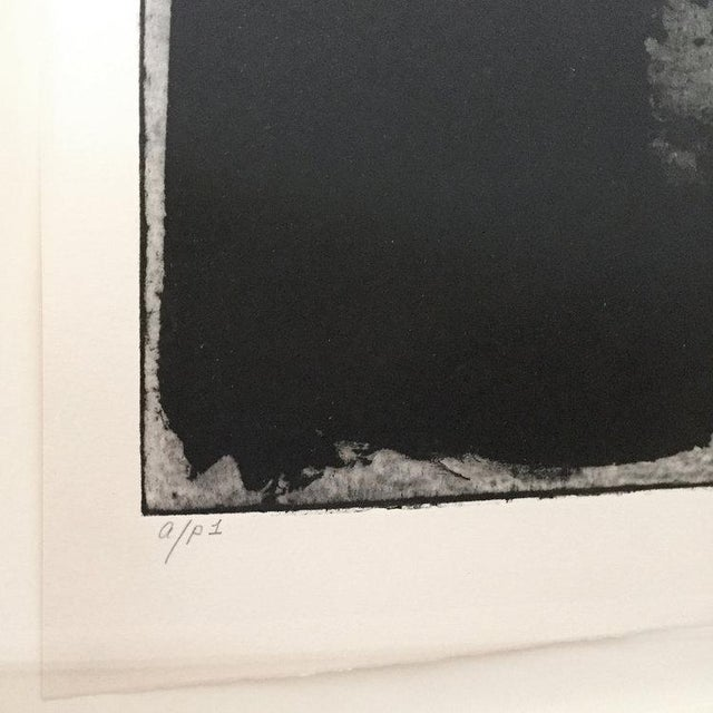 2010s Dolores Tema, Fractured Plates Print, 2014 For Sale - Image 5 of 7