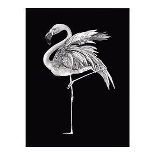 Black & White Flamingo Giclee Print For Sale
