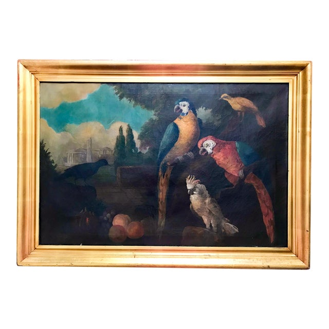 Jacob Bogdani Follower, Still Life With Parrots Oil on Canvas For Sale