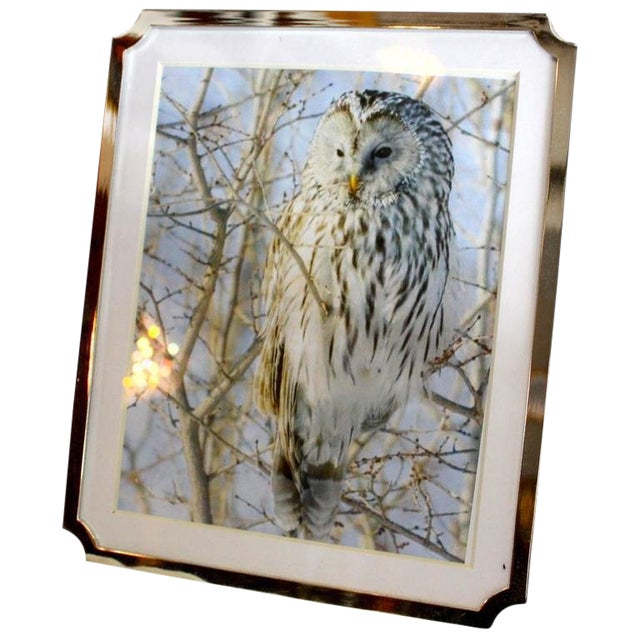 Silverplate Picture Frame For Sale