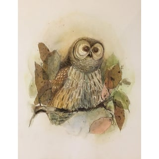 "Barbara Weldon ""Barred Owl"" Painting For Sale"