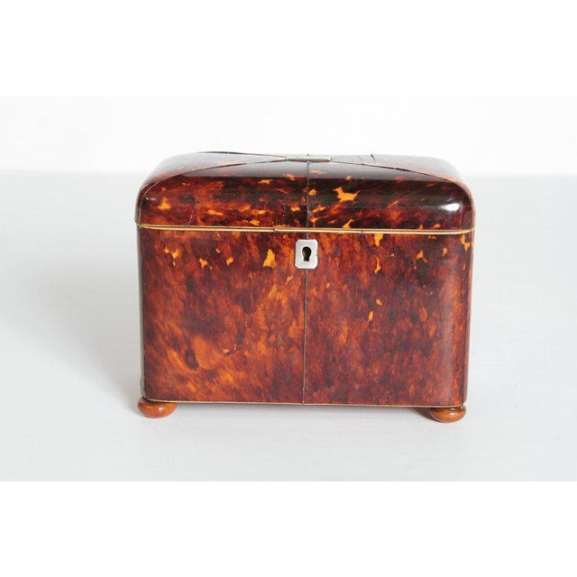 Early 19th Century English Regency Tortoiseshell Tea Caddy For Sale - Image 13 of 13