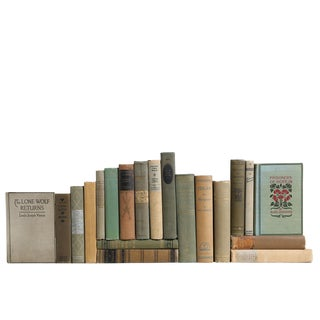 Vintage Book Collection in Spanish Moss - Set of 20