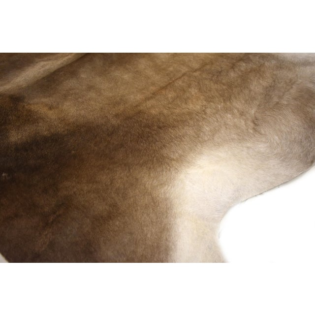 "2010s Premium Aydin Cowhide Rug, Handmade in Europe, Gray, 6'7"" X 6'7"" For Sale - Image 5 of 6"
