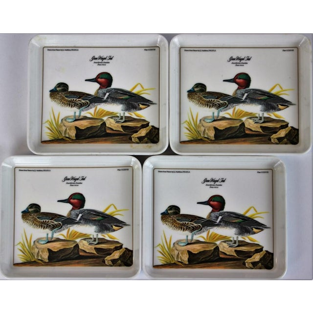 'Green Winged Teal' Audubon Coasters made in Italy, drawn from Nature by J.J. Audubon. In excellent condition. Dimensions:...