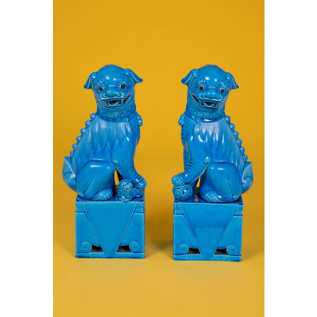 Oversize Pair of Vintage Turquoise Foo Dogs For Sale - Image 10 of 10