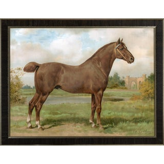 Hackney Horse by Eerelman Framed in Italian Wood Vener Moulding For Sale