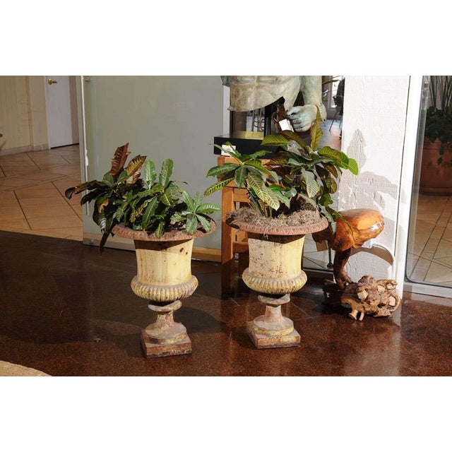 French Pair of French Painted Iron Urns For Sale - Image 3 of 7