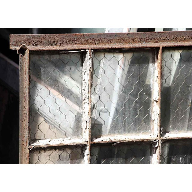 Industrial 30 Pane Steel Frame Chicken Wire Glass Window For Sale - Image 3 of 5