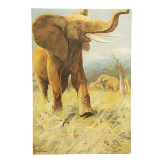 German vintage elephant school poster For Sale