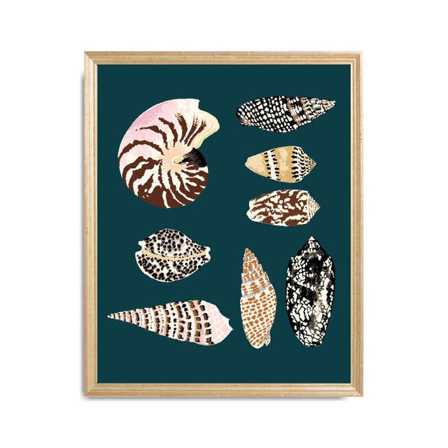 """Mid-Century Modern """"Fiji Shells in Teal"""" Contemporary Giclee Print by Sarah Gordon For Sale - Image 3 of 4"""