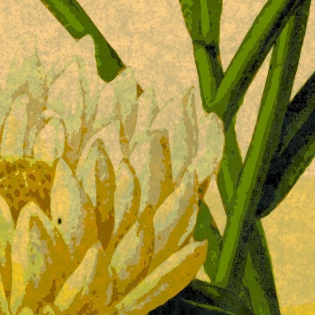 "Antique ""Yellow Floral"" Archival Print - Image 4 of 4"