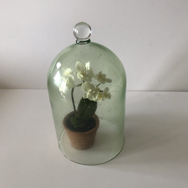 Vintage Green Terrarium Dome With (NEW) Silk White orchid Flowers Size: 7 x 7 x 13