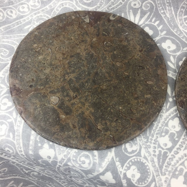 A beautiful pair of colorful Orthoceras Fossil Stone plates. These are made from true fossil stone that was cut and...