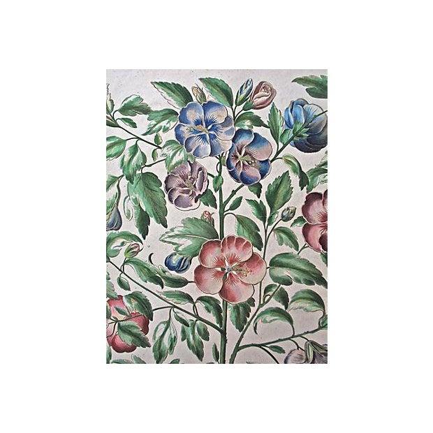 1615 Basilius Besler Botanical Engraving - Image 2 of 6