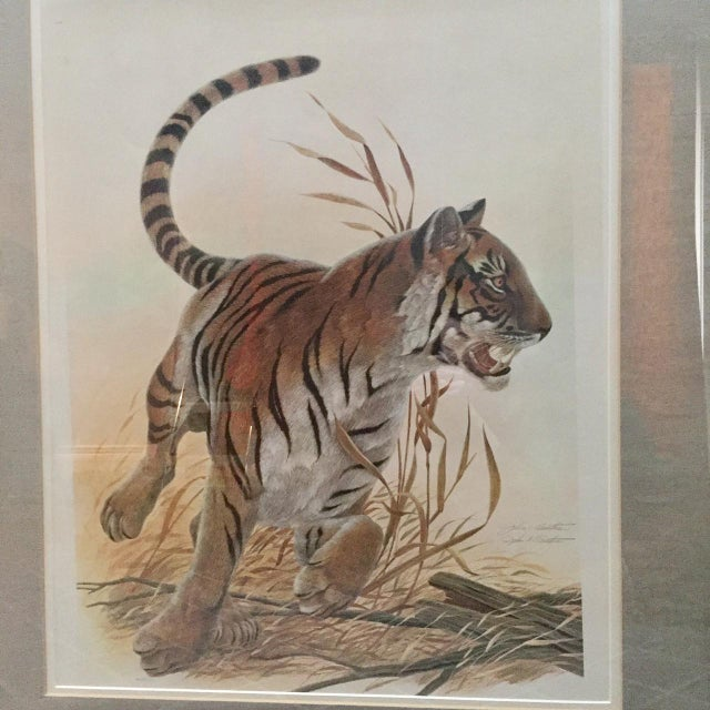 "John Ruthven Copper Framed John Ruthven ""Bengal Tiger"" Lithograph From 1970s Safari Series For Sale - Image 4 of 9"