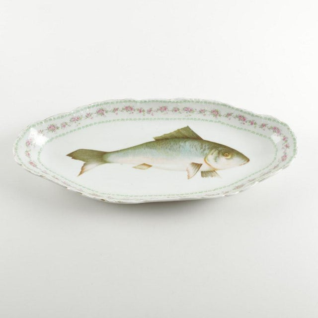 Austrian Ls (Lewis Straus) & S Carlsbad Porcelain Fish Platter For Sale - Image 9 of 9