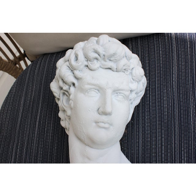 White Large Scale Bust of David For Sale - Image 8 of 13