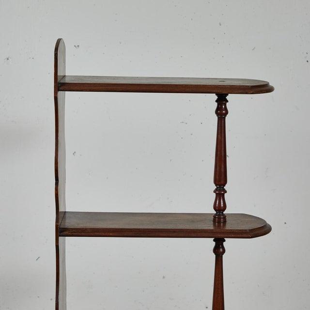 Mid-Century Modern Late 19th Century English Chemist Mahogany Shelf For Sale - Image 3 of 12